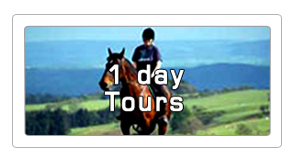 1 day horseback tours