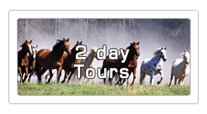 2 day horseback tours
