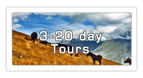 3-20 day horseback tours